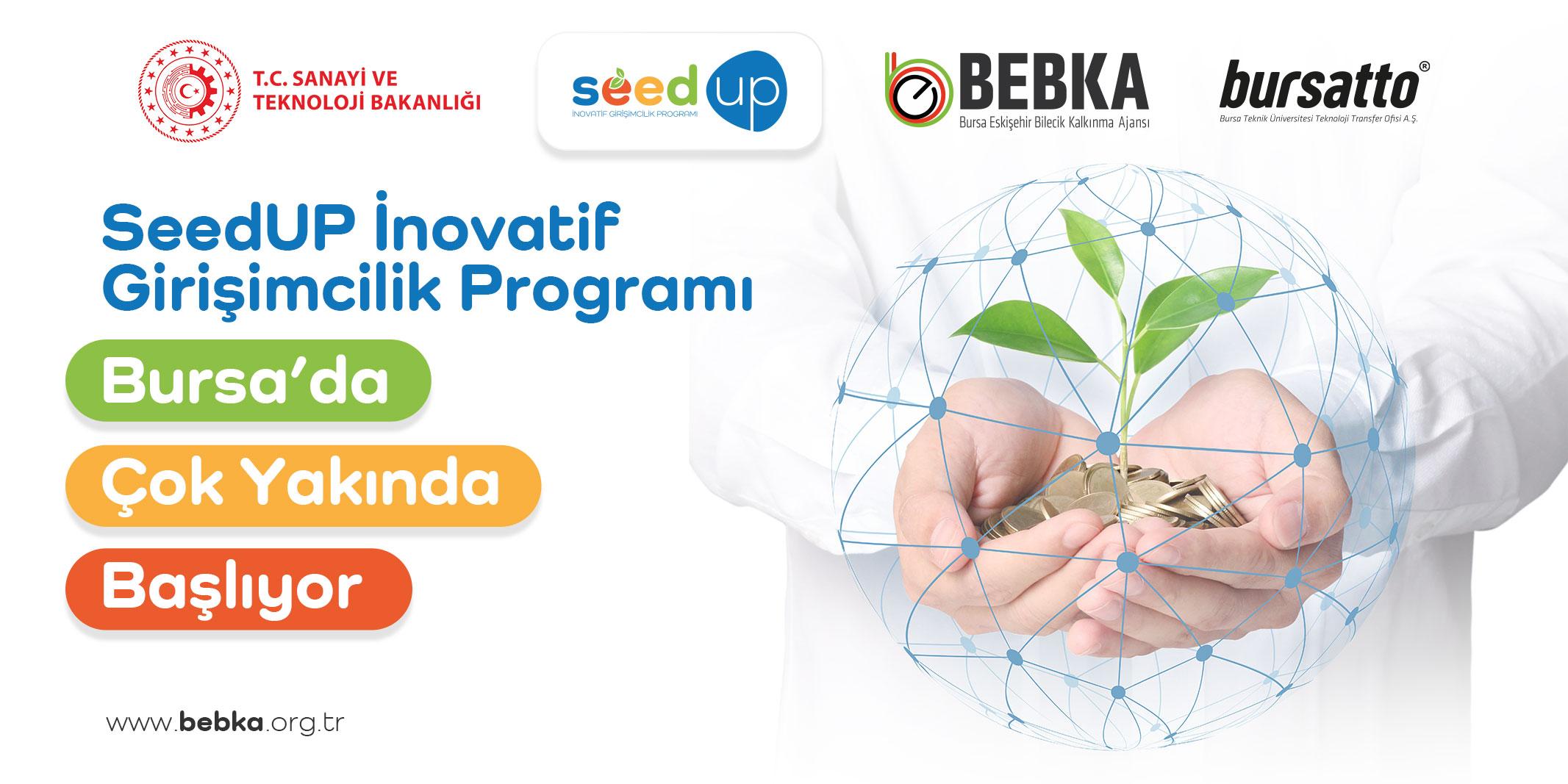 bebka-seedup